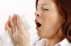 Image result for mold allergies