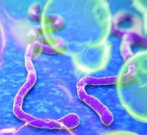 Evolving Future of Disease