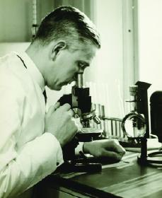 Are Stem Cells the Next Penicillin