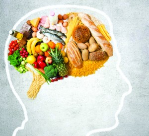 The Relationship between   Nutrition and Brain