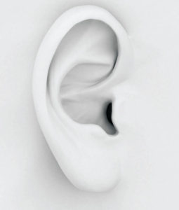 5 Facts About Your Hearing Health